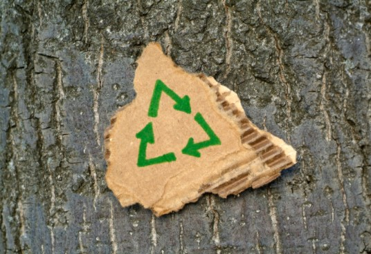 Join the Recycling Business
